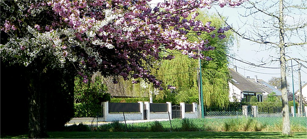 Guigneville3 parc