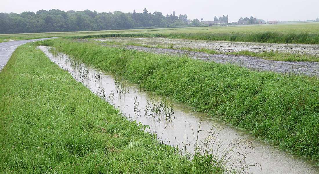 Inondat16 1