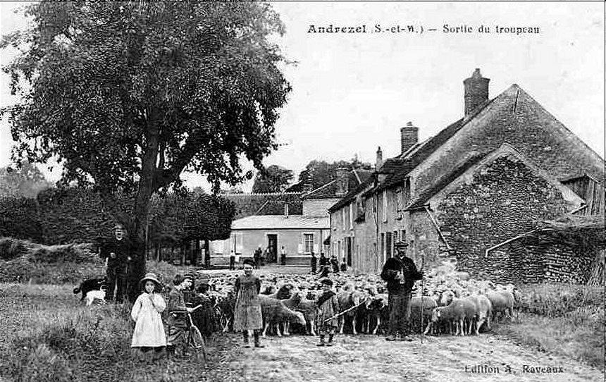 Hier avec le troupeau de mouton